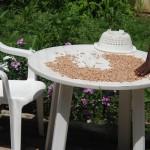 4. soltorka på ett bord